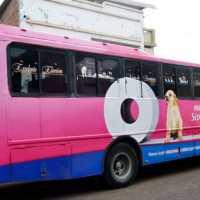 Publicidad en buses full branding